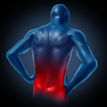 6 Back Pain Myths Exposed