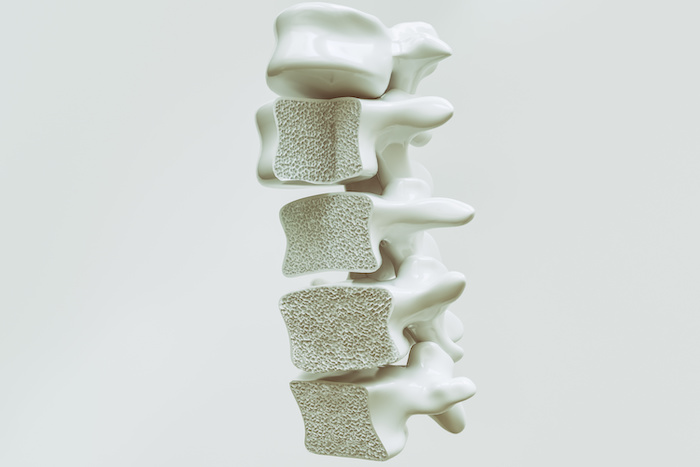 bone density and spine health
