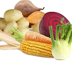 High Carbohydrate Vegetables that Could Be Affecting Your Blood Sugar and Weight Loss